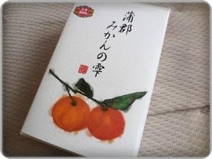 DSCN6064_R.JPG